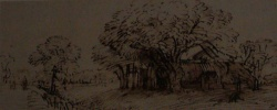 Rembrandt van Rijn - drawings (30).JPG