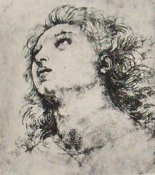 Raphael-drawings (10).JPG