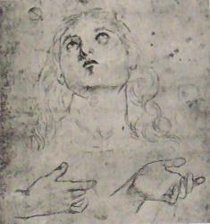 Raphael-drawings (11).JPG