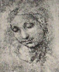 Raphael-drawings (14).JPG