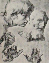 Raphael-drawings (54).JPG
