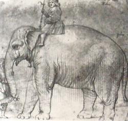Raphael-drawings (56).JPG