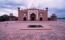 India-Agra-Tajentree.jpeg