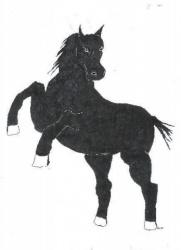 Cheval Noir.jpg